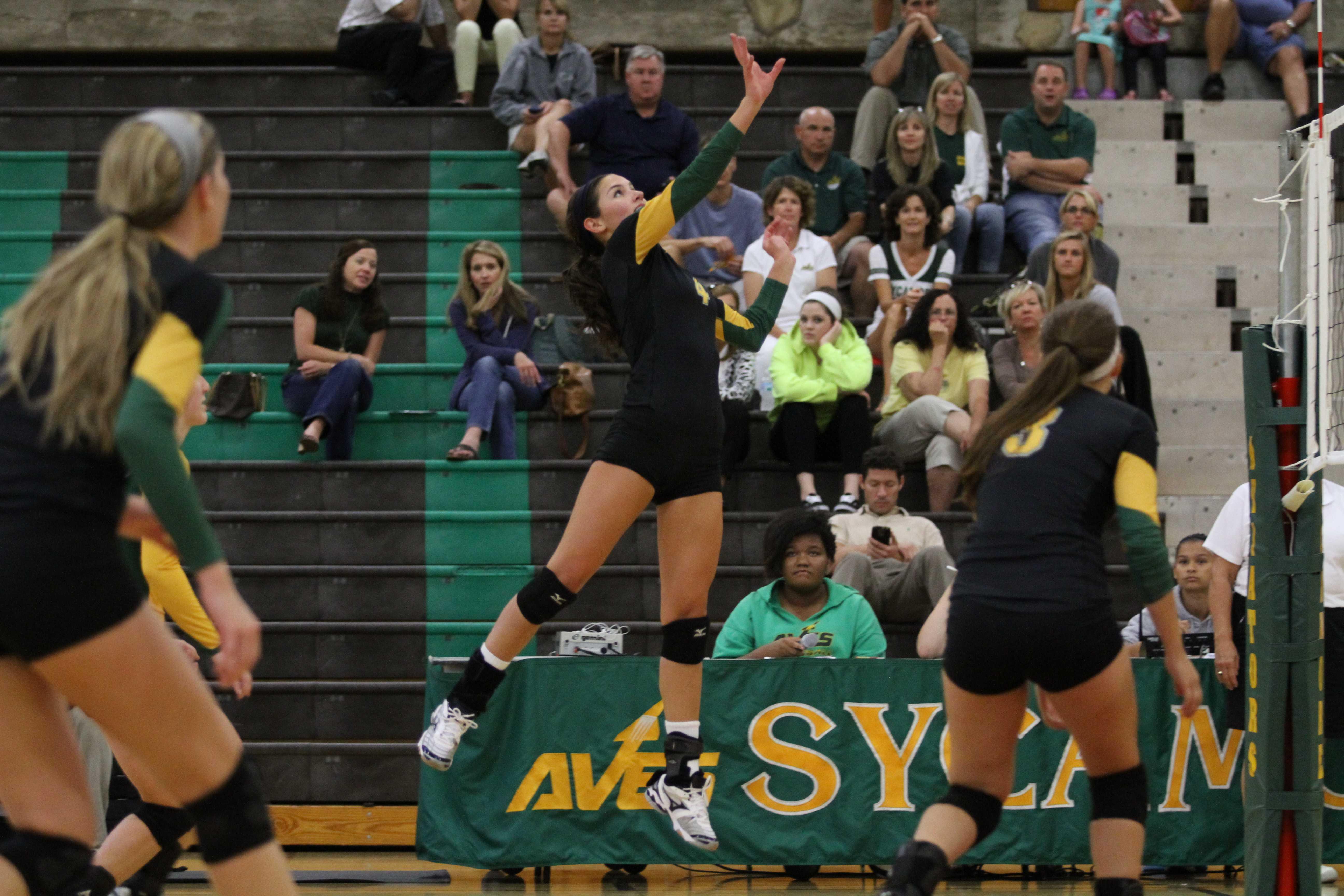 Seniors' volleyball season ends too soon