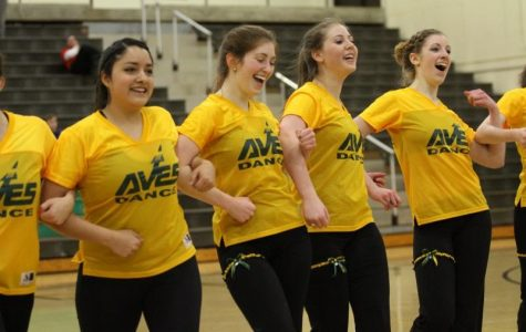 The seniors are performed at Senior Night for basketball, cheerleading and Flyerettes. There are 12 seniors leaving the Flyerettes. This leaves the seven remaining members with a large recruiting task. Photo courtesy of McDaniel's Photography.