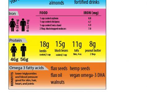Nutrient substitutes for vegans