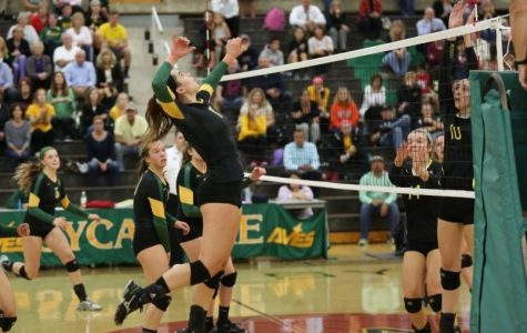 Volleyball starts State tournament on strong note