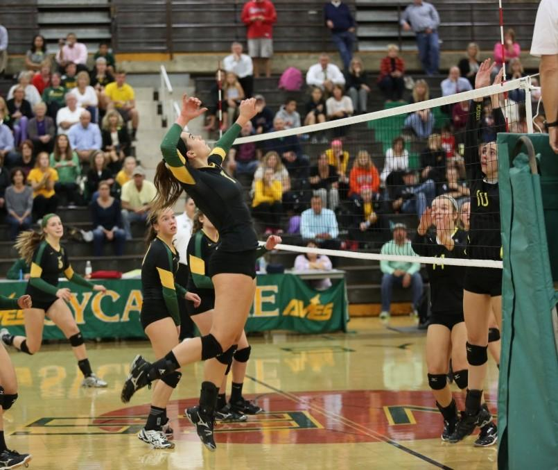 Volleyball+starts+State+tournament+on+strong+note