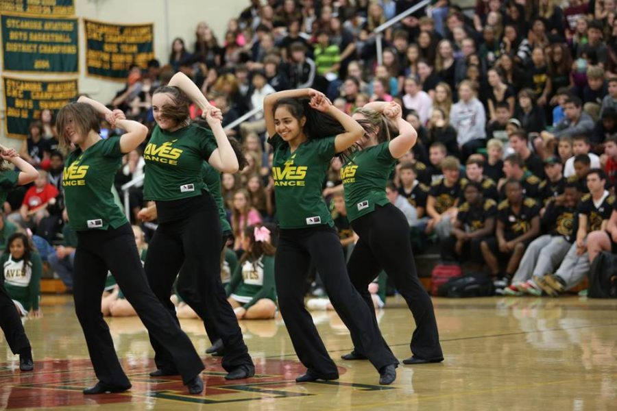 The+Flyerettes%2C+SHS%27+dance+team+performing+at+the+Homecoming+pep+rally+on+Oct.+10.+They+danced+to+a+routine+that+they+have+been+practicing+since+Aug..+They+also+used+the+dance+at+the+Variety+Show+on+Sept.+26.+