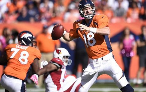 In last year's Super Bowl, the Denver Broncos lost to the Seattle Seahawks by a score of 43 to eight. The Seahawks are back in the Super Bowl for the second consecutive year. This year, the game is played in Glendale, AZ compared to last season's first ever cold weather Super Bowl in New York, NY.