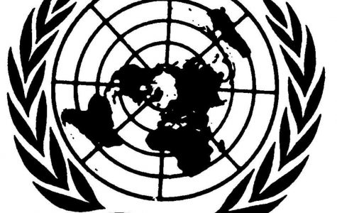 Q&A with senior Nakul Narendran on upcoming Model United Nations conference