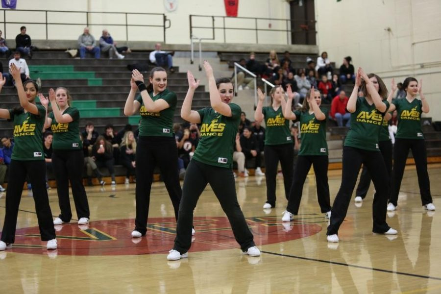 The+Flyerettes+are+finishing+their+hip-hop+dance+to+the+song+%E2%80%98Push-it%E2%80%99+during+halftime+on+Dec.+12+versus+Fairfield.+The+team+learned+this+dance+at+Universal+Dance+Association+camp+at+Miami+University.++Three+of+the+teammates+learned+this+dance+there+and+they+taught+it+to+the+rest+of+the+team.+Photo+courtesy+of+McDaniel%E2%80%99s+Photography