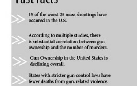 Quickly looking at gun control