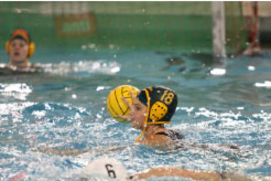 Senior Jory Gould, four year player and captain takes a shot completing her full line of stats. The Lady Aves are currently 21-3 and are undefeated against all water polo teams in Cincinnati.