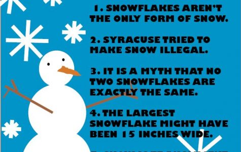 Snow facts