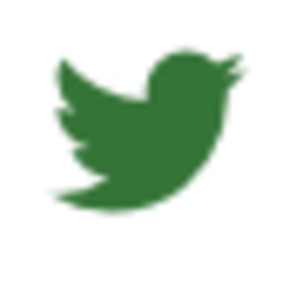 TwitterIcon