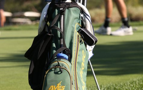 Varsity golf swings into season