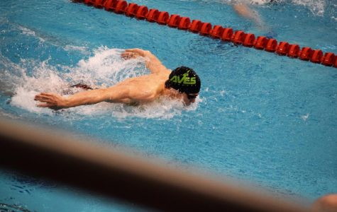 FLY. Noah Patterson, 10, swam individually in the 100 fly (shown) and the 200 freestyle. Though he did not qualify in his individual events, he will be swimming in both the 200 medley and 400 freestyle relays. Hw and the rest of the team are happy with how they swam and are excited for state.