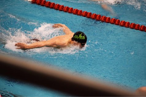 Swimmers speed towards state