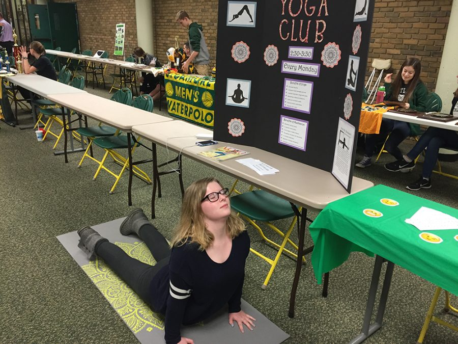 Yoga+Club+president+Creek+does+a+sun+salutation+in+from+of+her+booth.+The+booth+was+for+the+Academic+Fair+on+Jan.+10th.+Creek+tried+to+sell+Yoga+Club+to+incoming+freshmen+and+other+class+men+that+have+not+tried+Yoga+Club.+