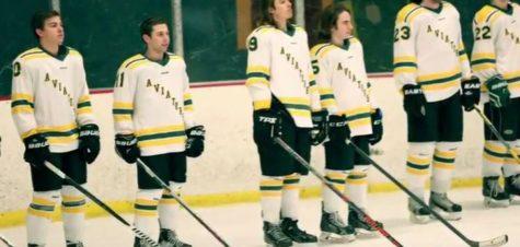 Aves Hockey