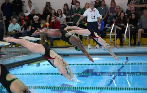 """GO AVES. Senior Sarah Abraham dives into the pool alongside her opponents. The swim team bid farewell to the class of 2018 at Senior Night on Mon., Jan, 22. """"It was a great way to wrap up my swimming career and relive memories I've made over the last four years,"""" said Anita Pan, 12."""