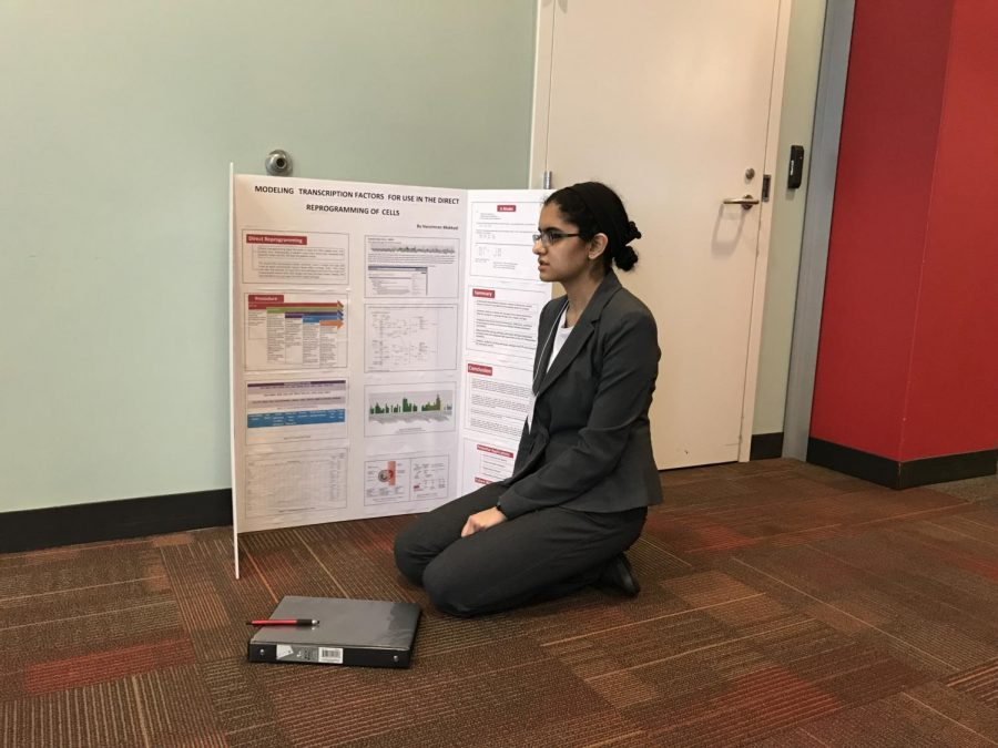 """PREPARE. Senior Harsimran Makkad gets ready to present her science fair project. This is in the hallway outside the rooms in which she will present for the second round of judging. """"I really enjoyed walking around at the beginning of the fair and looking at all the amazing work everyone had done. There were so many great projects and new ideas, and I feel that the future of science is in great hands,"""" Makkad said."""