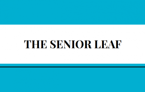 Senior superlatives, destinations, wills, more!