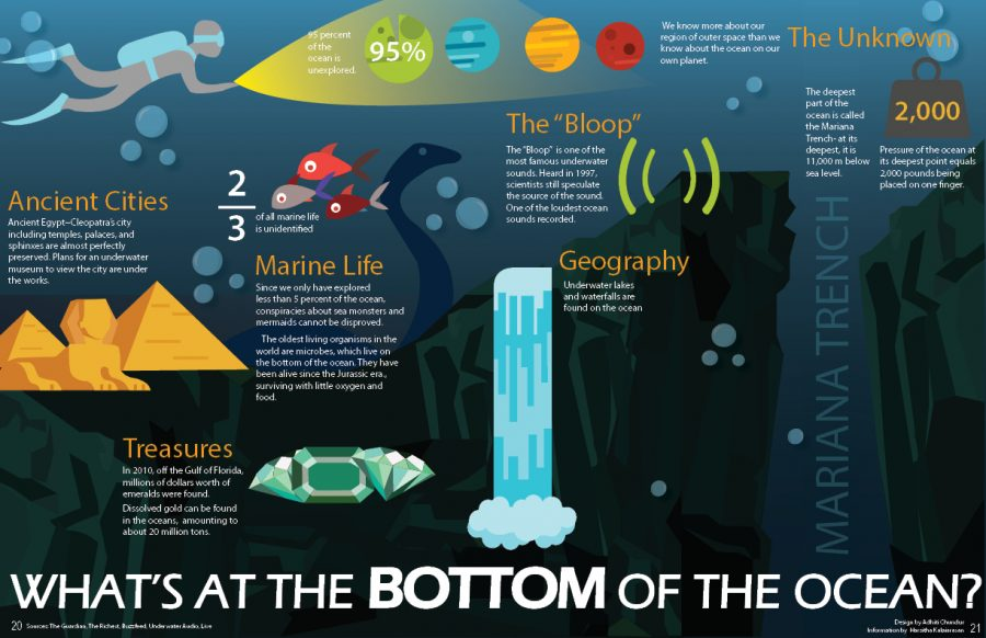What's at the bottom of the ocean?