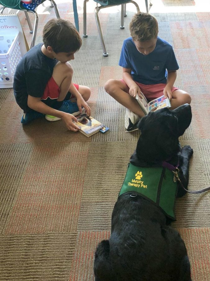 """FURRY FRIEND. Two Maple Dale students are reading to Murphy. One of the students is holding an """"I survived book"""", which he is going to read to Murphy. """"My students were really sad to see Murphy leave our class but it did not change their behaviors. They were great Aviators and they went right back to work,"""" said Mrs. Carly Lefton, first grade teacher at Maple Dale."""