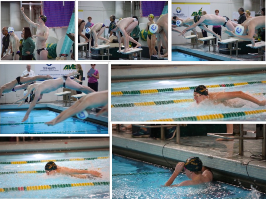 """The Sycamore Aves Varsity swim team is preparing for their next meet which will be the ever-so-famous GMC meet. Senior Elliot Carl has swam his whole high school career and more. According to gmcsports.com, Carl's time for the 200 Yard Freestyle is 1:52.93. """"Swimming has been a part of my life for almost 13 years and I can't imagine living without it. It has taught me so many skills such as competitiveness, time management and proper nutrition. Without swimming I cannot imagine where I would be, and I can't imagine going into college without it being a part of my life,"""" Carl said."""
