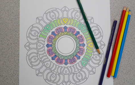"""RELAX AND COLOR. Many students in AP Psychology chose to color a design as a way to de-stress. The students were given a day to catch their breath and lower their stress levels. """"It is hard to destress when you are in a loud space. We should have a mandatory, absolutely silent place in our school,"""" said Adam Kossen, 12, AP Psychology student."""