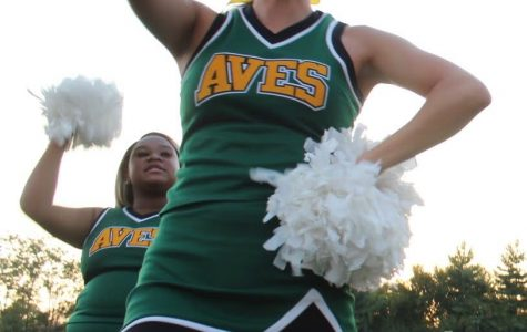 Fall sports celebrate senior night