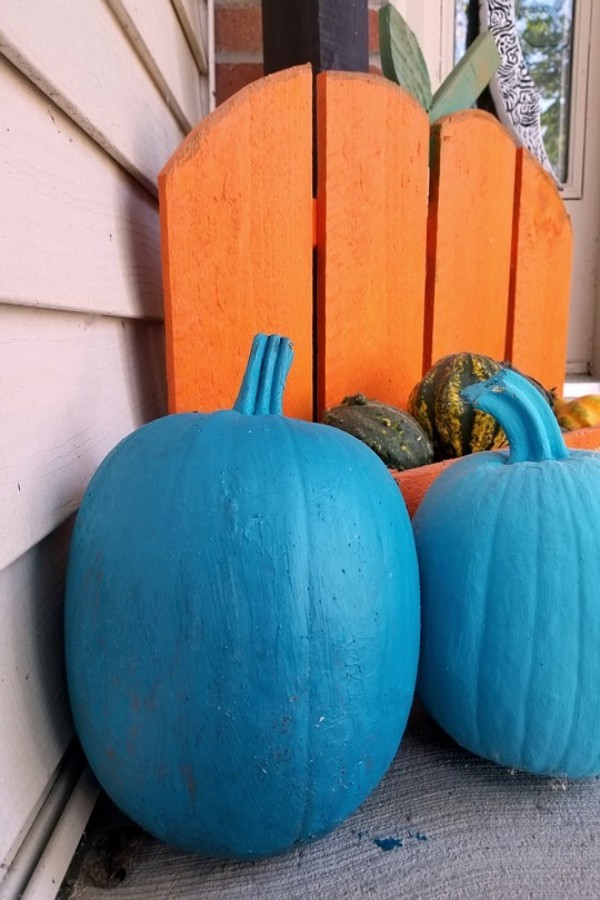"""RAISING AWARENESS.  This Halloween, many trick-or-treaters who are nonverbal or have autism will use a blue candy bucket to raise awareness. Children who are nonverbal often struggle with trick-or-treating because the houses they visit expect them to say """"trick or treat."""" The idea for the blue bucket came from a mother of a child with nonverbal autism who hopes to make Halloween easier and more fun for her son and other children. Other inclusive initiatives for Halloween include the Teal Pumpkin Project, which encourages people to provide safe non-food treats for children with food allergies. """"I've seen a lot about [the blue buckets] on social media, which also gives me hope that things in general in our country are becoming more inclusive,"""" said Ms. Lydia Dogget, speech-language pathologist at SHS."""