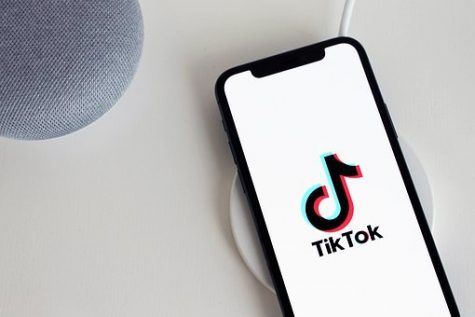 Although we have to do online school for the rest of the school year, there are some upsides to having time to yourself or even free time at all. All grades are affected by the shelter in place order, but some more than others. Try to make the most of your time and not spend hours on end on TikTok. Read ahead for a sophomore's perspective on COVID-19. Stay safe!