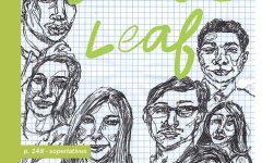 2020 Senior Leaf