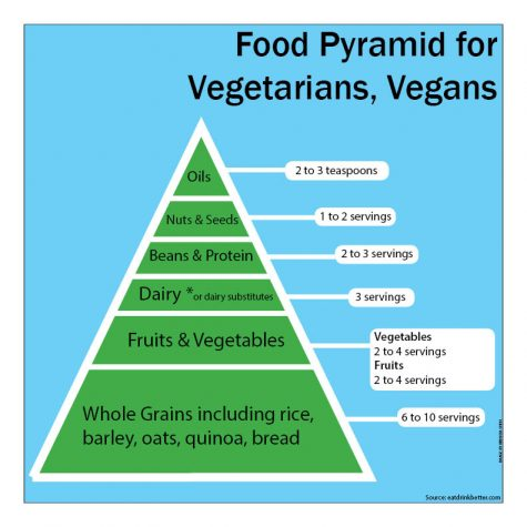 Infographic: Our Food Pyramid