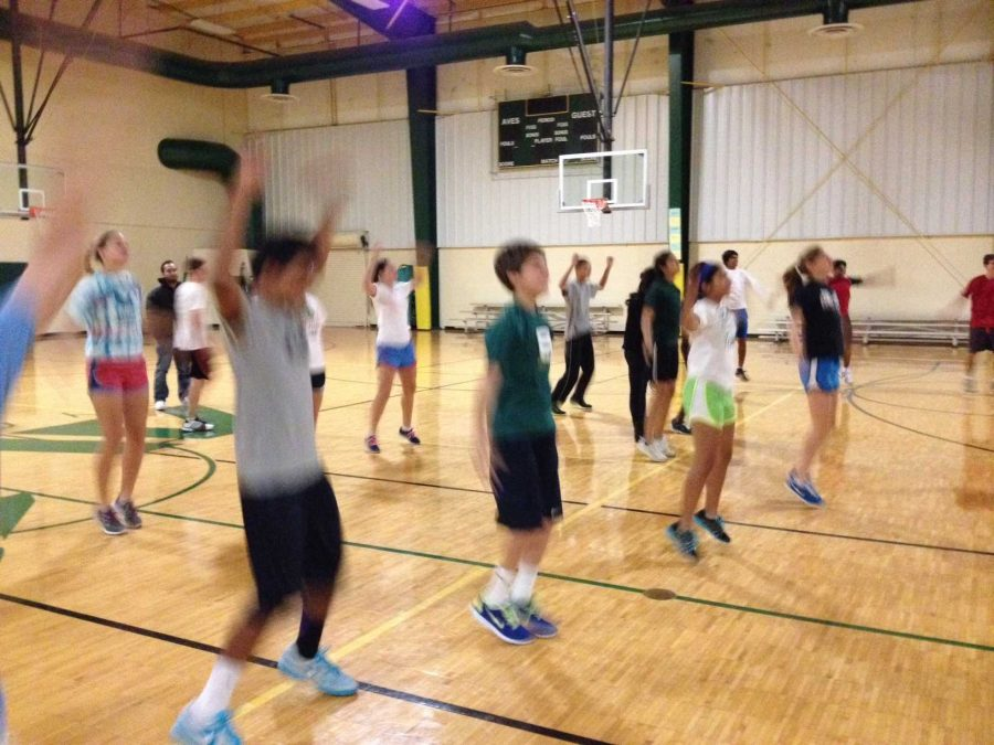 Jumping Jacks and other upper body activities are part of the routine. Morning conditioning begins every Tue. and Thu. at six am. Tryouts begin Mar. 10. Photo Courtesy of Alex Wittenbaum