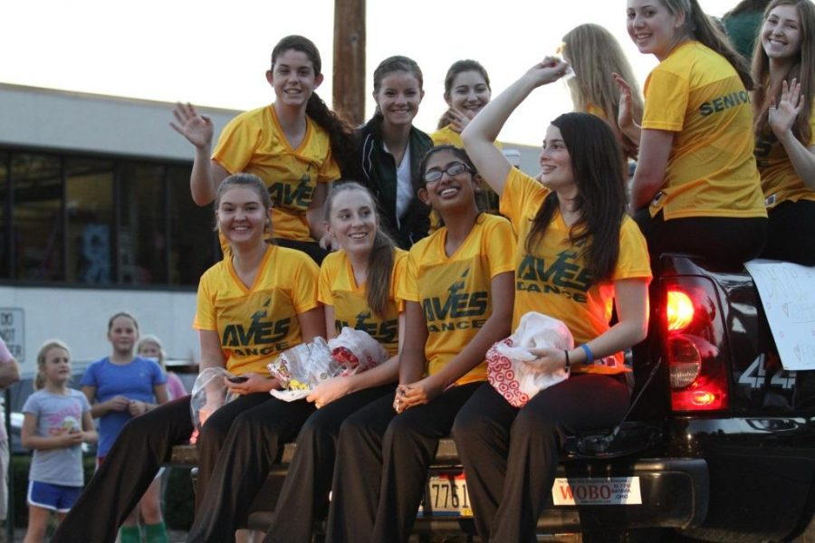 The Flyerettes at the homecoming parade. They worked very hard on their two dances during homecoming. They are currently preparing for the basketball season. Photo courtesy: McDaniel's Photography.