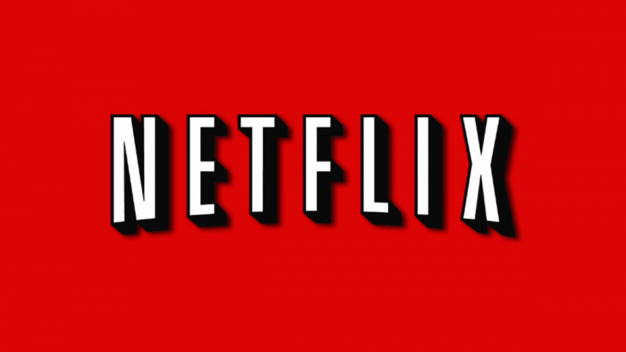 Netflix was founded in the year 1997. It currently has 40 million streaming members globally. Subscribed members can also instantly watch unlimited movies and television episodes directed to their televisions and computers. Photo courtesy of MCT Photo Service.