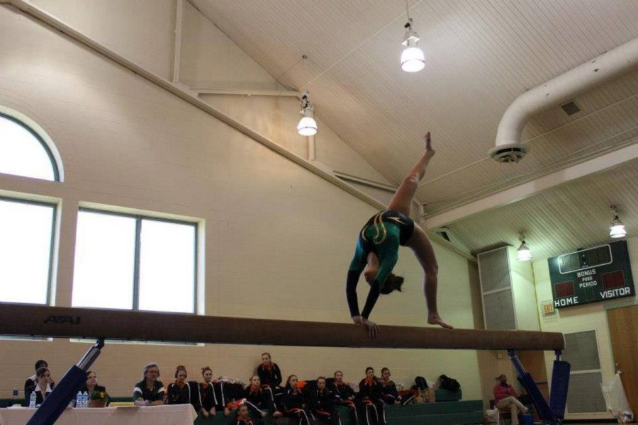 Q&A with Molly Gearin, 11, solo gymnast