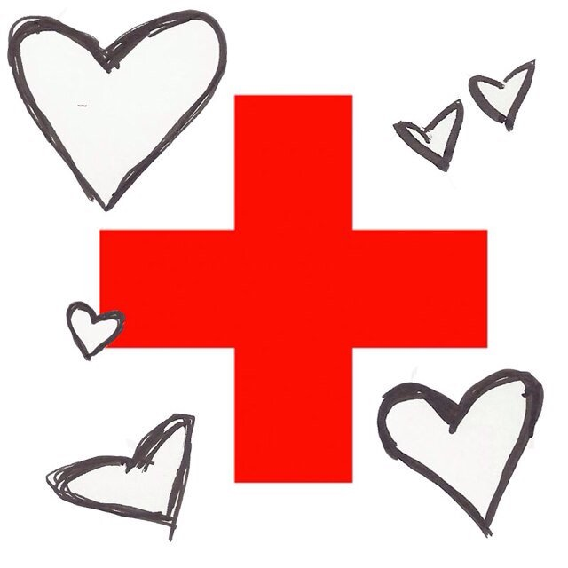 Qa With Shazia Malik 11 On The Red Cross Club The Leaf