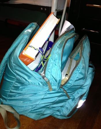 Heavy backpacks break backs