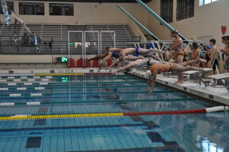 """The Jose Cerda Aquatic Foundation works to support swimmers and water polo players. This is one of the clinics that they have created to help swimmers. """"Student Council is so excited to be helping such a worthy and local cause,' said Max Weiss, 10. Photos Courtesy of Mrs. Louisa Cerda"""