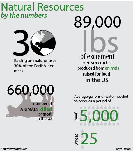 Natural Resources: by the numbers