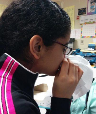 Attack of flu season
