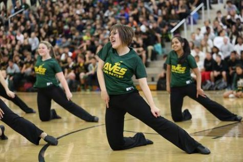 Senior Kathryn Tenbarge performs with the other flyrettes. They performed to a Britney Spears mix.