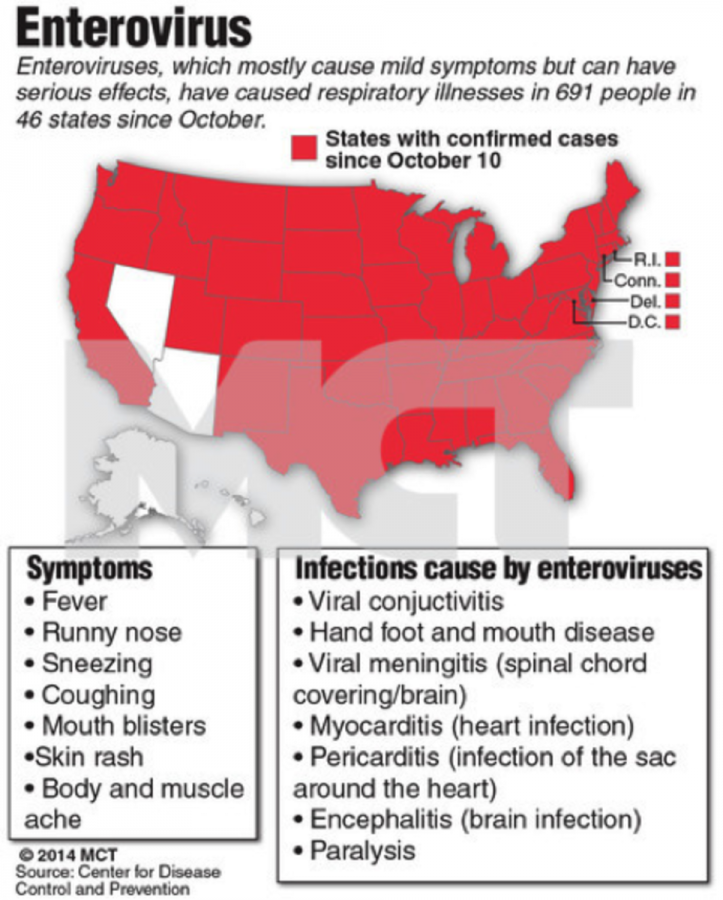 This+chart+shows+the+states+most+infected+with+enterovirus.+Though+it+may+not+be+a+serious+cause+of+death%2C+it+is+still+dangerous.+If+you+have+more+than+three+of+the+symptoms+below%2C+go+to+a+healthcare+professional+immediately.