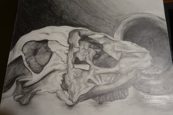 This drawing is a still-life of a cow skull and clay pot. There is a clear light source in the picture and the shadows give a more realistic feel. Try to always locate where your light is coming from in your art.