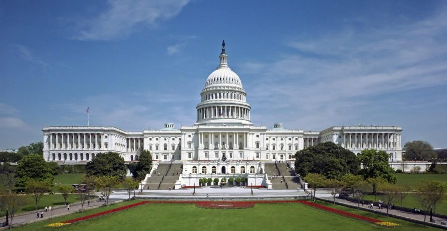 In the most recent session of Congress, senators and representatives will be discussing countless topics. One issue that will have a lifesaving impact is the Stem Cell Advancement Act. This would allow the research of stem cells to proceed with a federal backed budget. Photo courtesy of MCT Campus