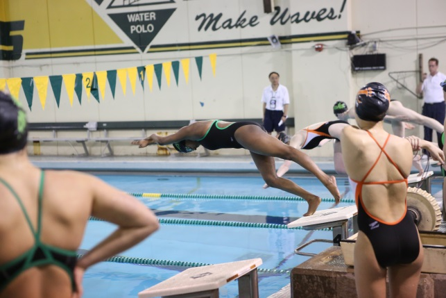 """Freshman Sarah Abraham dives into the water preparing to swim the 100 yard breaststroke. In the off season, Abraham works out to stay in shape. """"In the off season for swimmer I play water polo which helps me because it involves swimming and its good cross training,"""" Abraham said."""