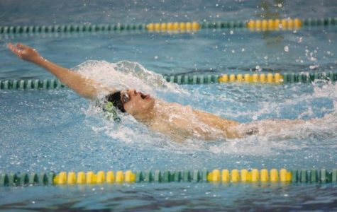 Swimmers showcase talents throughout the season