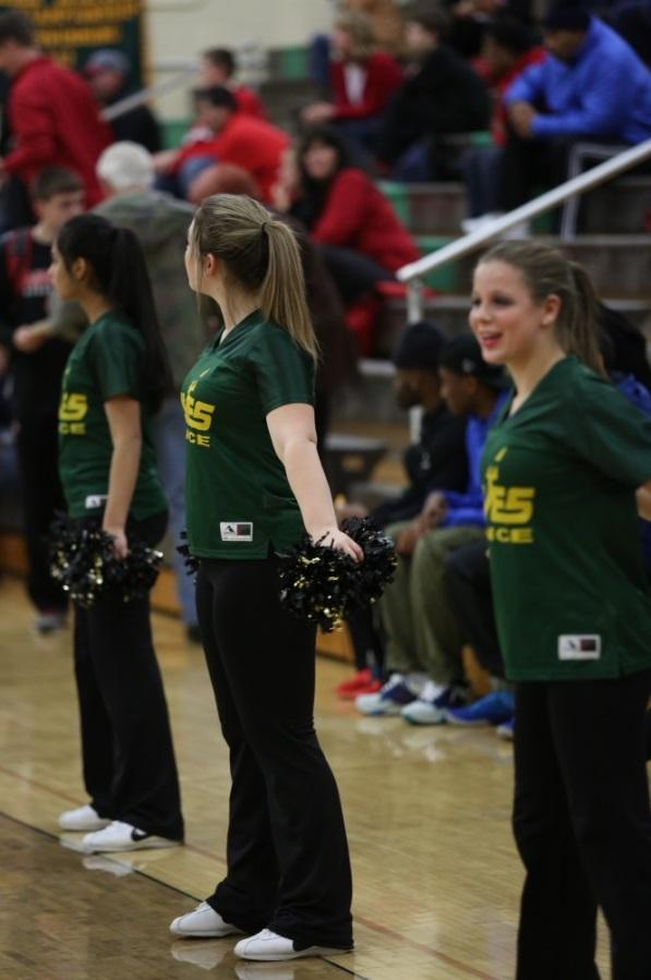 """""""This past year was my first year dancing. Before this I was a cheerleader since kindergarten but I have really enjoyed the Flyerettes.  I am really excited for the new coach and to hear her new ideas and to see what she has in store for us this season,"""" said Davis. Photo courtesy of McDaniel's Photography."""