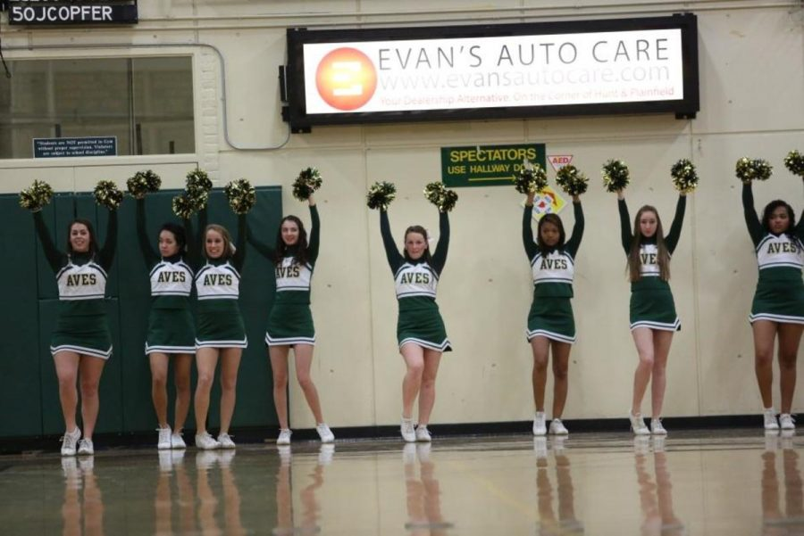 """The JV cheerleading squad is cheering during a JV home boys' basketball game.  While the team did not do well with a losing season, the girls had a good time cheering. """"I think the JV season went well as far as learning,"""" Bartlett said. Photo courtesy of McDaniel's Photography."""