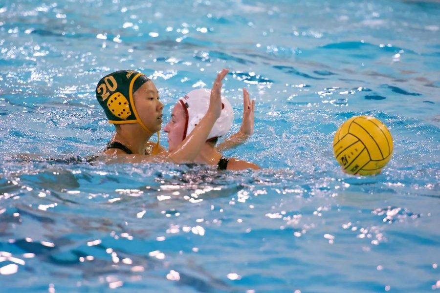 Senior Jessica Wei passes the ball to a teammate. Wei primarily plays as a field player, however she has trained goalie as well and acts as the back up goalie for sophomore Abigail Hausefeld. Wei also plays for the Moose water polo club team in the off season.