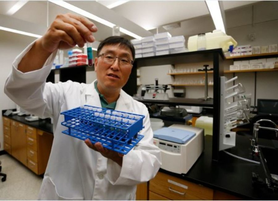 Dr.+Joon+Lee+holds+processed+mosquitos+in+a+tube+in+his+lab+at+the+University+of+North+Texas+Health+Science+Center+in+Texas.+Experts+are+concerned+about+the+spread+of+the+Zika+virus+to+the+United+States.+Many+health+officials+and+scientists+are+trying+to+find+a+way+to+prevent+this.+
