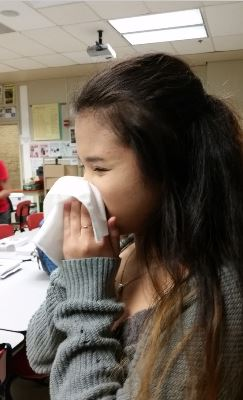 Allergy sufferers are often seen sniffling and sneezing during the spring. They constantly need to blow their noses. One tip is to get tissues that have lotion in them so your lips do not chap.